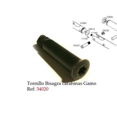 Tornillo Bisagra RG34020