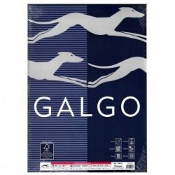Papel Galgo Verjurado A4 100gr 100 hojas Blanco